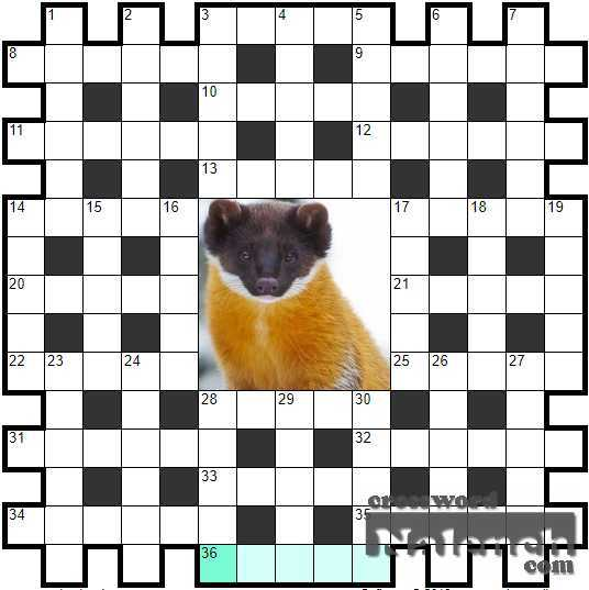 Solve Crossword «Fishing tackle» online